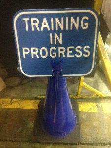 Training-in-Progress